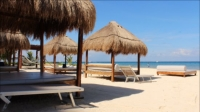 Travel Impressions - group offer in cozumel